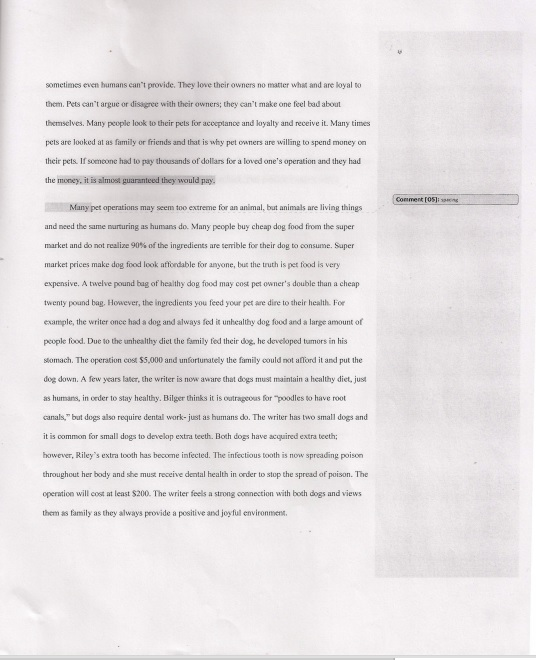 essay response the last meow senior portfolio  above is an essay i wrote in my english 12 course the objective was to an article called the last meow and decide whether or not you can put a price